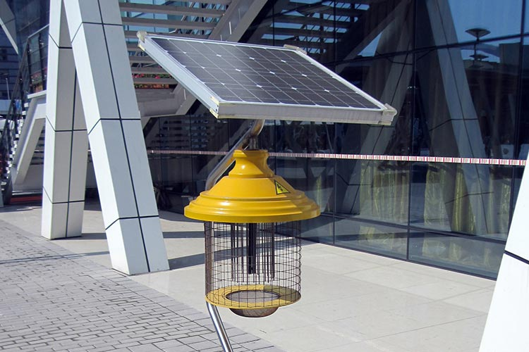 Solar-Powered Bug Zappers